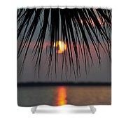 Palm Set Shower Curtain