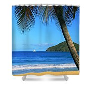 Palm Shaded Island Beach  Shower Curtain