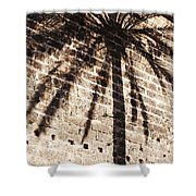 Palm Shadow Shower Curtain