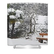 Palm Tree And A Bench With Snow Shower Curtain