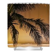 Palm Tree And Sunset In Mexico Shower Curtain by Darren Greenwood