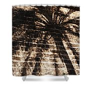 Palm Tree Cup Shower Curtain