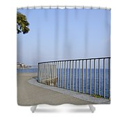 Palm Tree On The Lakefront Shower Curtain