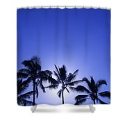 Palm Tree Silhouettes Shower Curtain