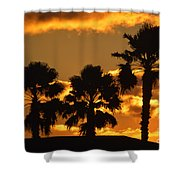 Palm Trees In Sunrise Shower Curtain by Susanne Van Hulst