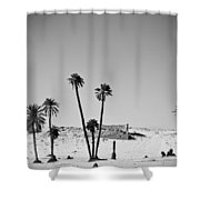 Palm Trees In The Sahara Desert Shower Curtain