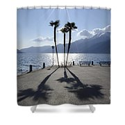 Palm Trees With Shadows Shower Curtain