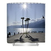 Palm Trees With Shadows On The Lakefront Shower Curtain
