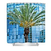 Palme Tree And Blue Building Shower Curtain