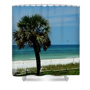 Palmetto And The Beach Shower Curtain