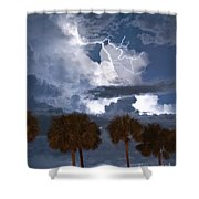Palms And Lightning 4 Shower Curtain