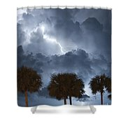Palms And Lightning 5 Shower Curtain