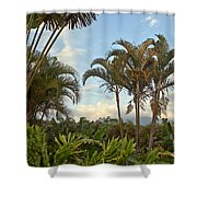 Palms In Costa Rica Shower Curtain