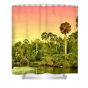 Palms In Twilight Shower Curtain