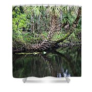 Palms On The River Shower Curtain