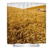 Palouse Wheat Shower Curtain