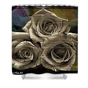 Paper Roses Art Shower Curtain