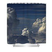 Parade Of Poodles Shower Curtain