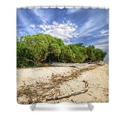 Paradise Lost 1.0 Shower Curtain