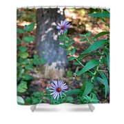 Paradise Springs Flowers 1 Shower Curtain