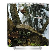 Paradise Springs Reflections Shower Curtain