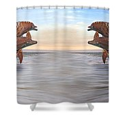 Parallels  Shower Curtain