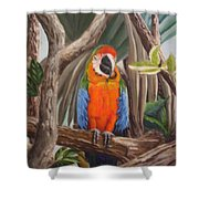 Parrot At New Orleans Zoo Shower Curtain