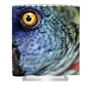Parrot, Close Up Shower Curtain