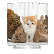 Partridge Pekin Bantam With Kitten Shower Curtain
