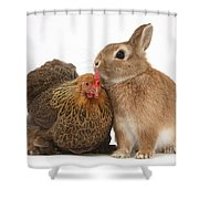 Partridge Pekin Bantam With Rabbit Shower Curtain