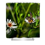 Party Flower 2 Shower Curtain