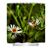 Party Flower Shower Curtain