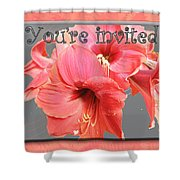 Party Invitation - Amaryllis Flowers Shower Curtain