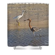 Passing Egrets Shower Curtain