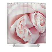 Passion For Flowers. One Rose Two Hearts Shower Curtain