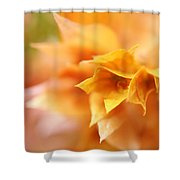 Passion For Flowers. Orange Delight Shower Curtain