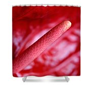 Passion For Flowers. Passion For Red Shower Curtain