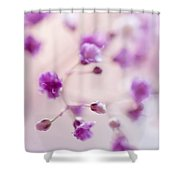 Passion For Flowers. Purple Pearls Of Gypsophila Shower Curtain