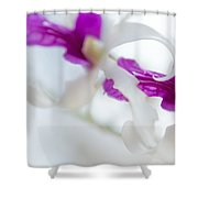 Passion For Flowers. Two Shower Curtain