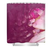 Passion Triptych 1 Shower Curtain