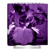 Passionate Purple Overload Shower Curtain