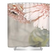 Passionly  Pink Shower Curtain
