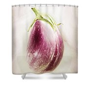 Pastel Eggplant Shower Curtain