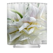 Pastels And Curls Shower Curtain