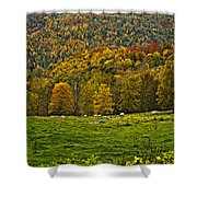 Pastoral Painted Shower Curtain