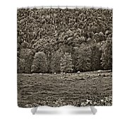 Pastoral Sepia Shower Curtain