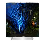 Path Of The Living Trees Shower Curtain
