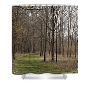 Path Of The Trees Shower Curtain