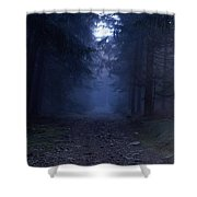 Path Through A Misty Forest Shower Curtain