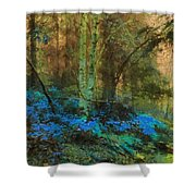 Path To Heaven Shower Curtain